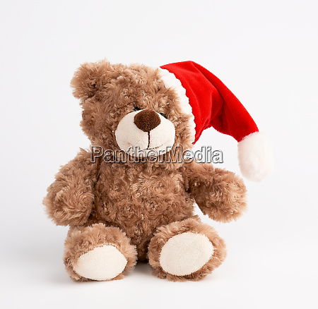 cute brown teddy bear in a