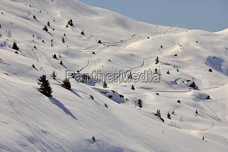 skiing slopes snowy alpine landscape