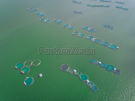 aerial view of fish farm pools