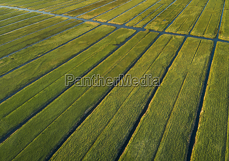 aerial view of farming fields with
