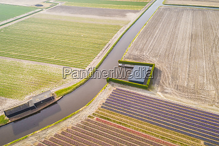 aerial view of canal among keukenhof