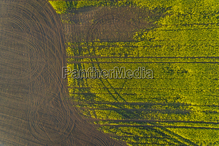 aerial view meadow field in estonia