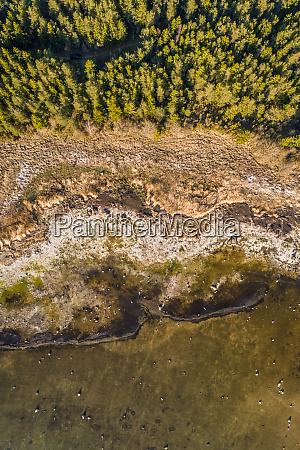 aerial view of algal bloom in