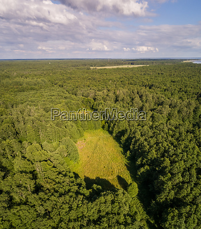 aerial view of beautiful forest on