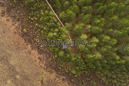 aerial view of forest near valgjarv