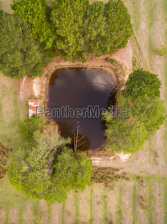 aerial view of a polluted pond