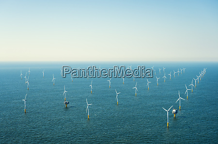 offshore wind farm in the borselle