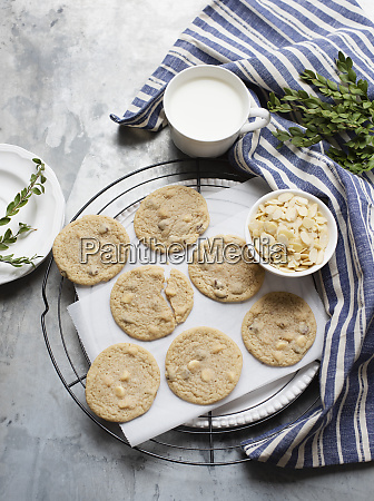 still life of almond cookies on