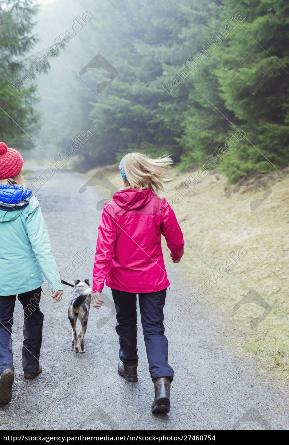 women, with, dog, hiking, in, woods - 27460754