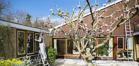 male painter on ladder painting home