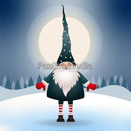 cute gnome in the christmas night