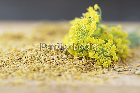fennel pollen with fennel flowers