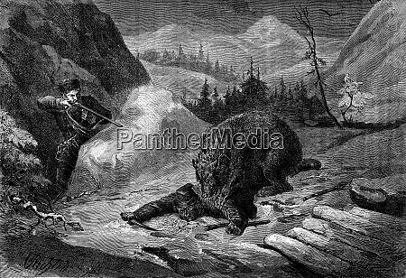 death of bear his comrade visa