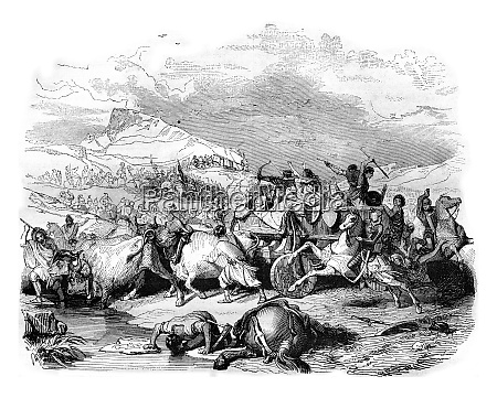 defeat of cimbrian vintage engraving