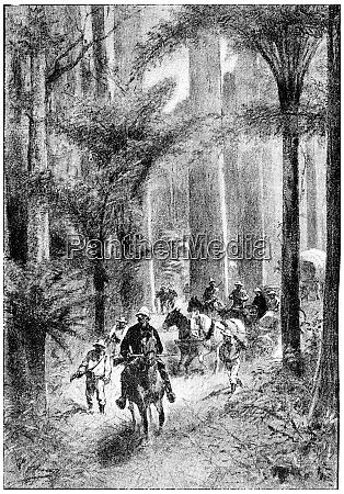 buggies and wagons were virtually at