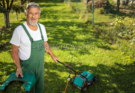 senior gardenr gardening in his permaculture