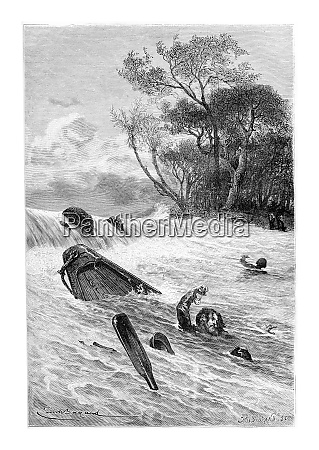swimming to safety vintage engraving