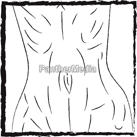 lean waist vector or color illustration
