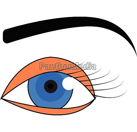 blue eye with black eyebrow
