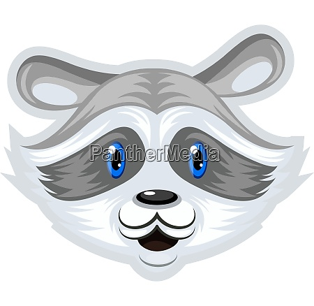 racoon with blue eyes illustration vector