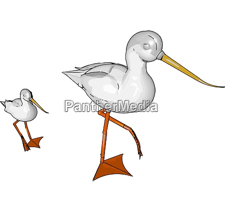 large wading bird vector or color