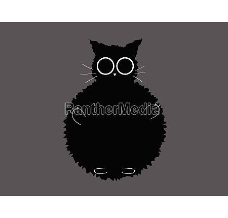 portrait of a black furry cat