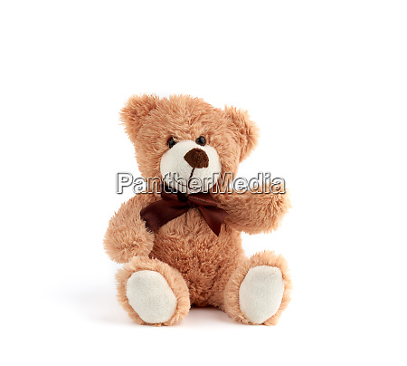 cute brown teddy bear with a