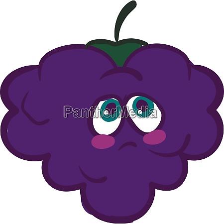 a melancholic blackberry vector or color