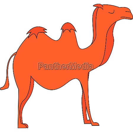 silhouette of a camel vector or