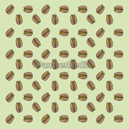 pistachios wallpaper illustration vector on white