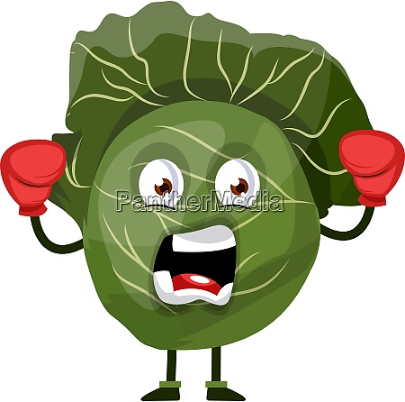 yelling cabbage with boxing gloves illustration