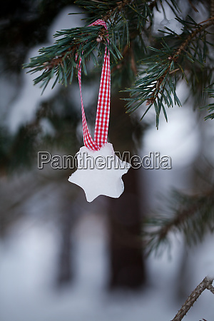 ice christmas ornament with fir branch