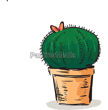 drawing of a lovely pot with