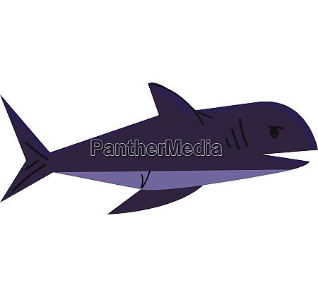 a big deep water sea fish