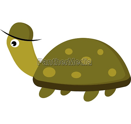 tortoise with cap vector or color