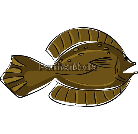 clipart of a winter flounder fishpseudopleuronectes
