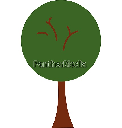 green tree vector or color illustration