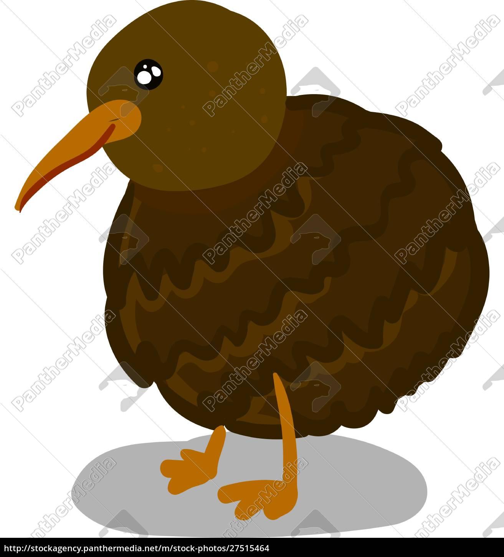 a, happy, kiwi, bird, , vector, or - 27515464