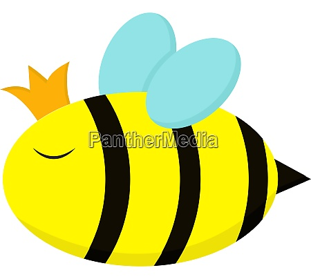 queen bee vector or color illustration