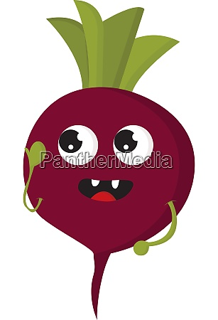 a fresh radish vector or color