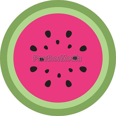 half of watermelon illustration vector on