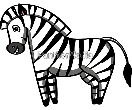 happy zebra illustration vector on white