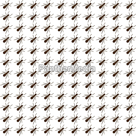 ants wallpaper illustration vector on white