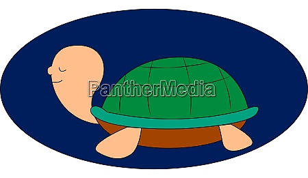 weird turtle illustration vector on white