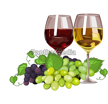 vector of wine glass and grapes
