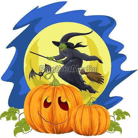 vector of halloween pumpkin and flying