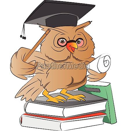 smart owl graduate illustration