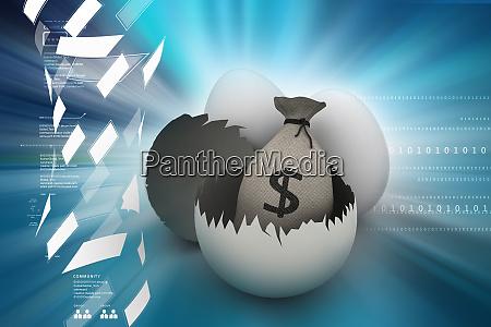 money bag in egg shell