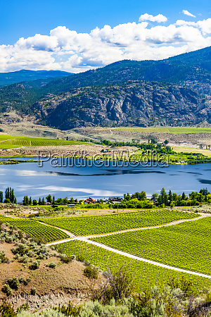 south okanagan from the top of