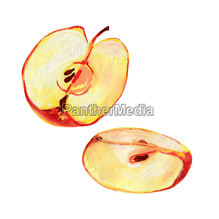 one red apple isolated on a